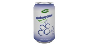 Natural blueberry juice drink 330ml