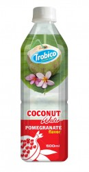 500ml Fruit Flavour Coconut Water
